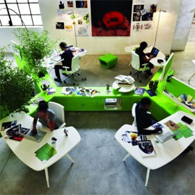Green Office Workplace